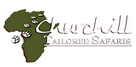 Churchill Tailored Safaris white logo