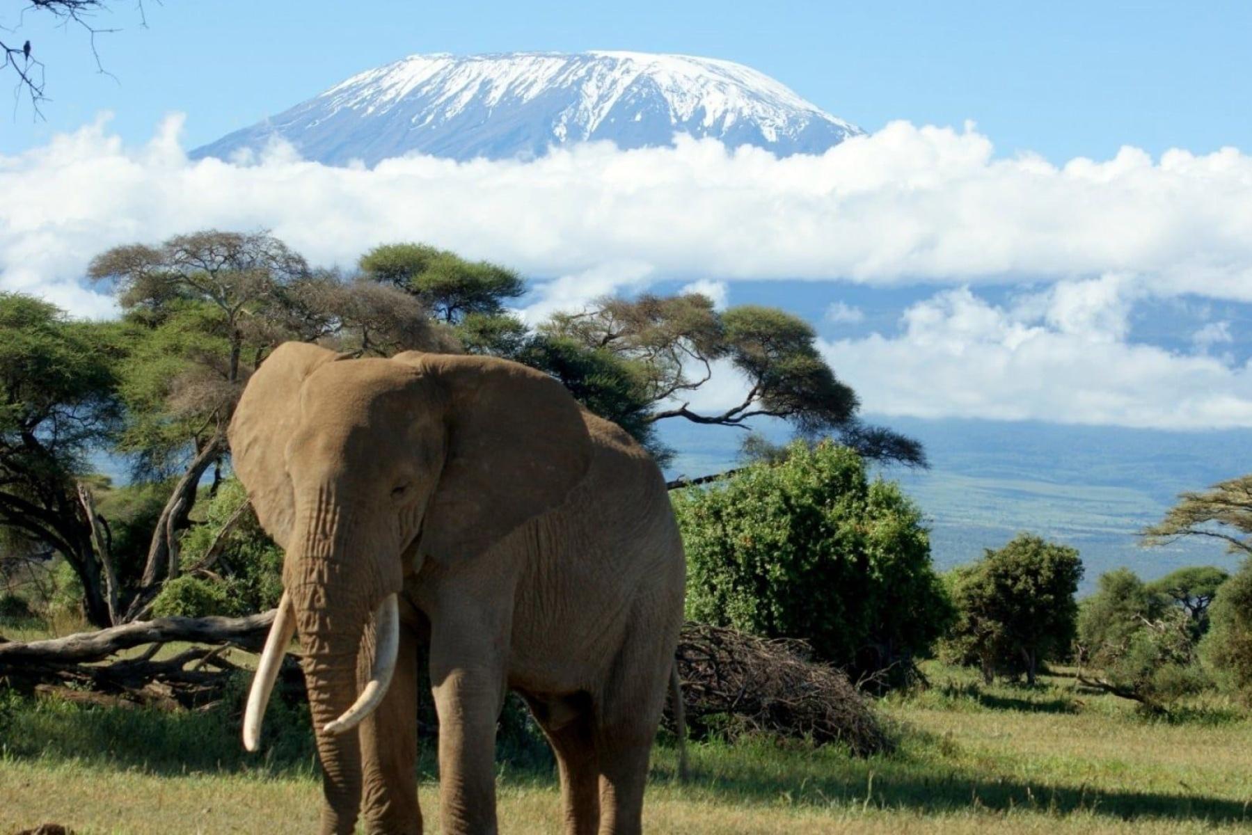 , Tanzania