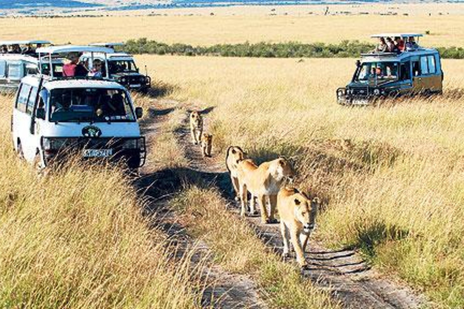 , South Africa
